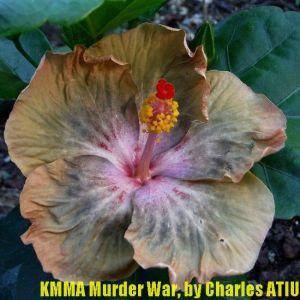 KMMA Murder War