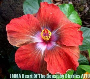 22 JMMA Heart Of The Beast
