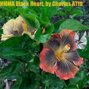 27 NMMA Black Heart