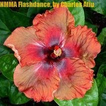 NMMA Flashdance