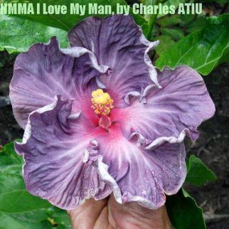 NMMA I Love My Man