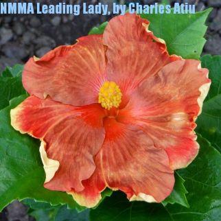 NMMA Leading Lady