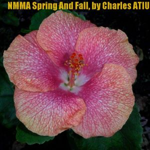 NMMA Spring And Fall