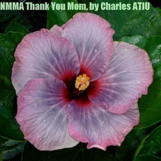NMMA Thank You Mom