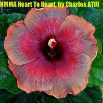 26 NMMA Heart To Heart