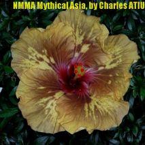 8 NMMA Mythical Asia