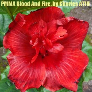 PMMA Blood And Fire