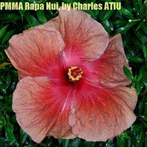 PMMA Rapa Nui