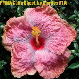 PMMA Satin Sheet