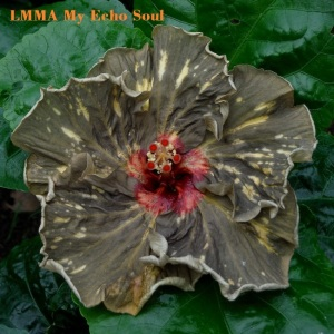 3- LMMA My Echo Soul