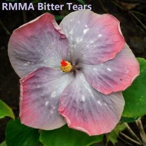 9 RMMA Bitter Tears