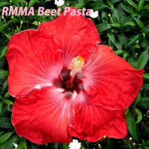 RMMA Beet Pasta