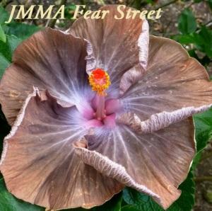 51 JMMA Fear Street