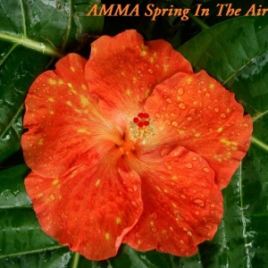 35 AMMA Spring In The Air