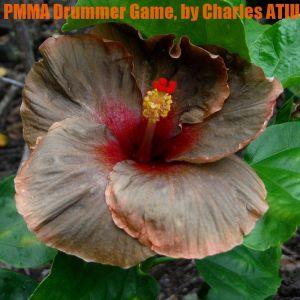 PMMA Drummer Game