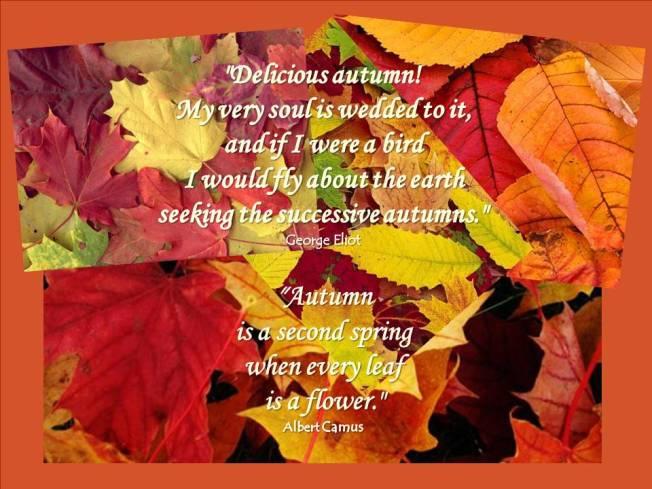autumnquotespi